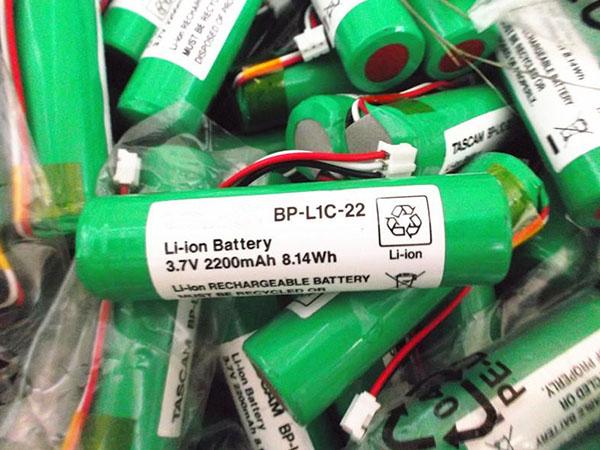 TASCAM BP-L1C-22